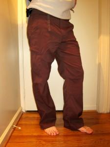 Prana Stretch Zion Pants Shorts